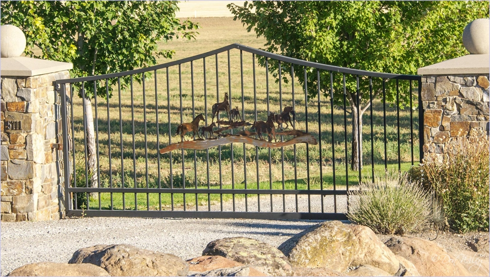 A Gate With Horses
