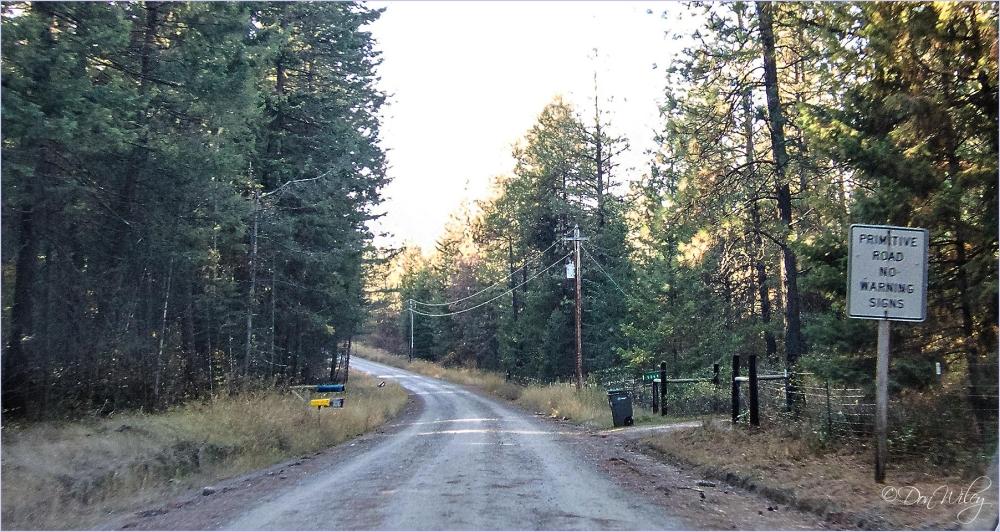 Primitive Road