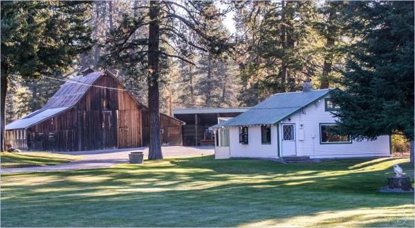 Farm Home, Barn and Owl