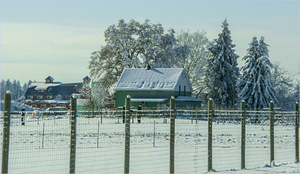 Fenced Snow Farm