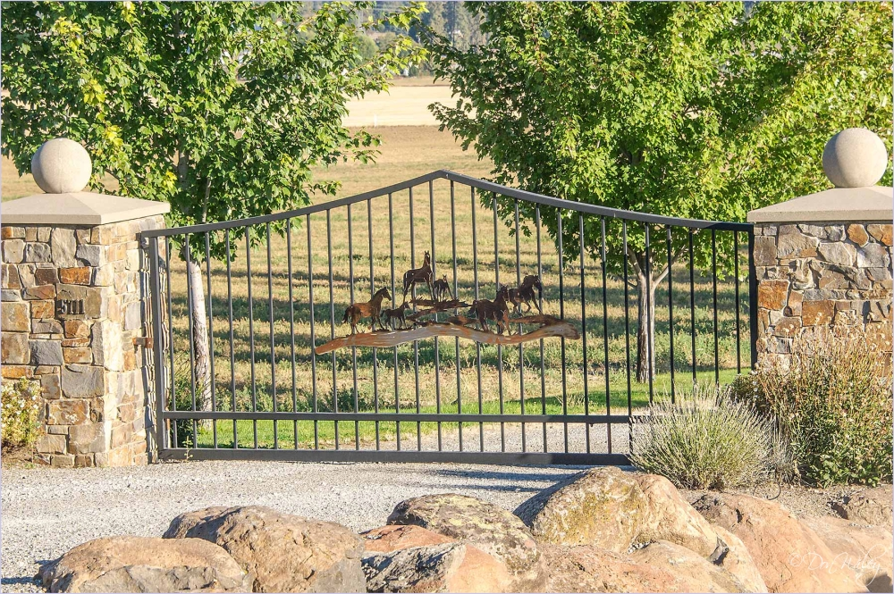 Horses decorated gate
