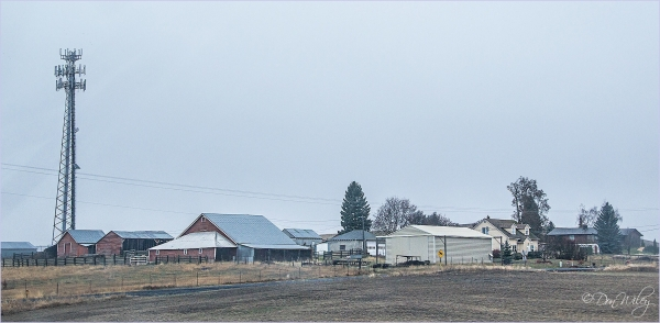 Cell Tower Farm