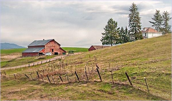 A farmyard up the hill