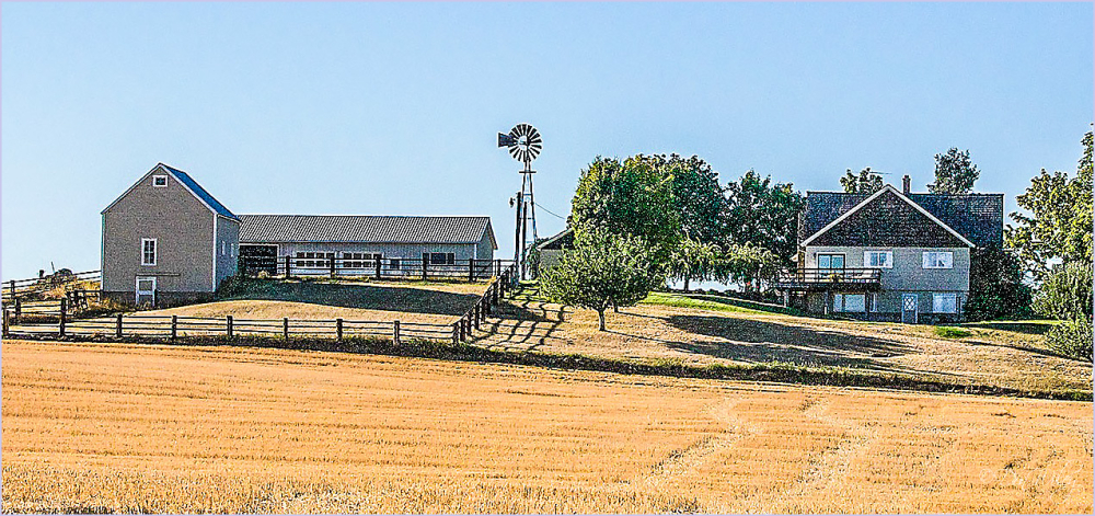 Farmyard With A Wind Mill