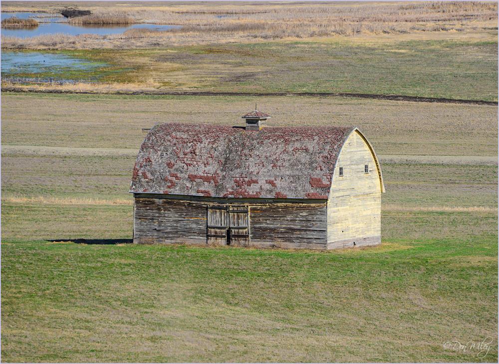 Lonely Barn