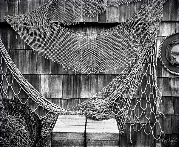 Worn Nets