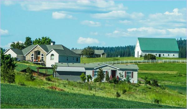 Spiffy Farmyard