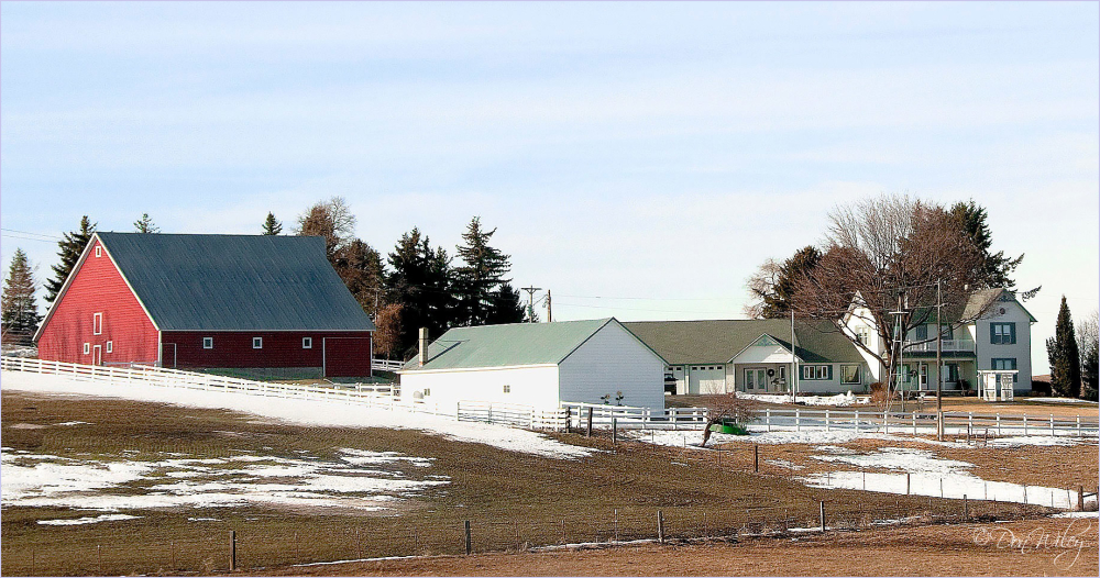Farmyard and Home