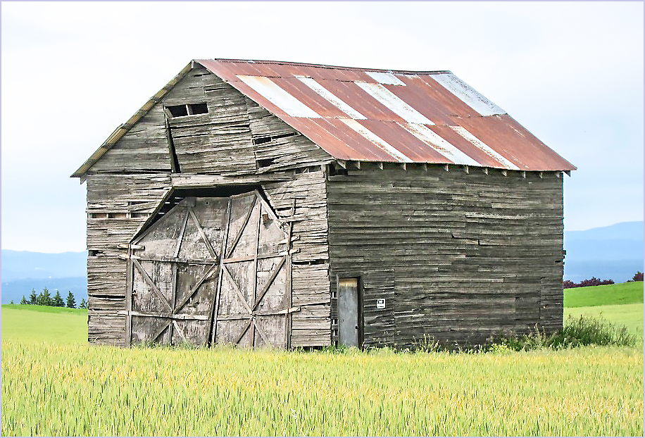 Steel Roof Barn