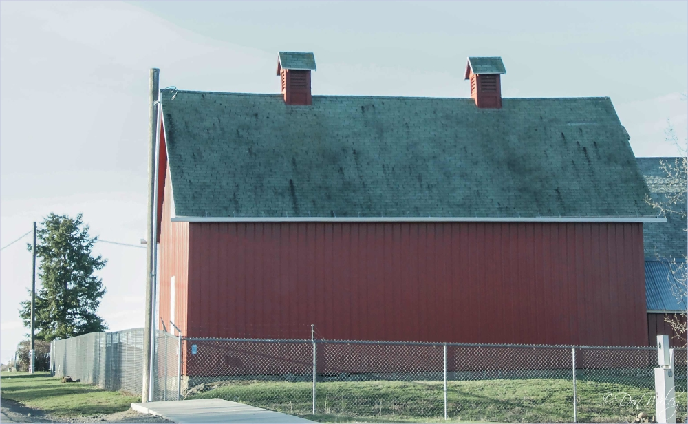 A City Barn