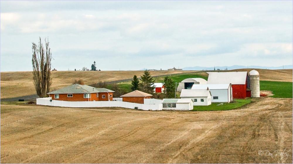 A Western Farmyard