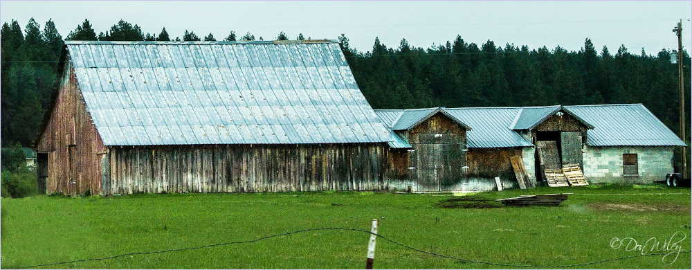 Long Shed or Barn