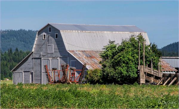 A Gray Barn