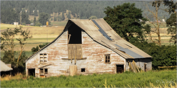 Failing Barn