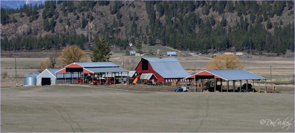 Farmyard Buildings