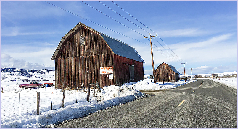 Two Brown Barns