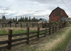 Fence To The Barn