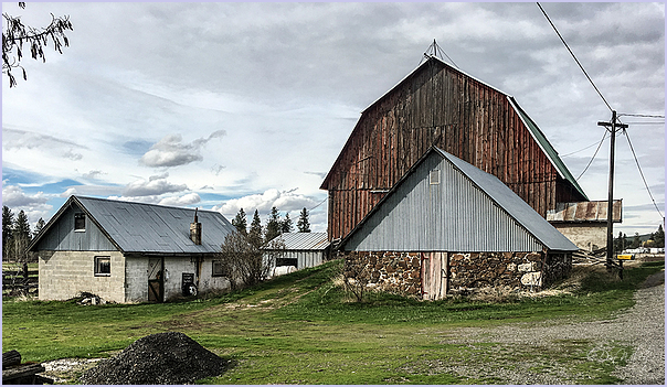 Sheds and Barn