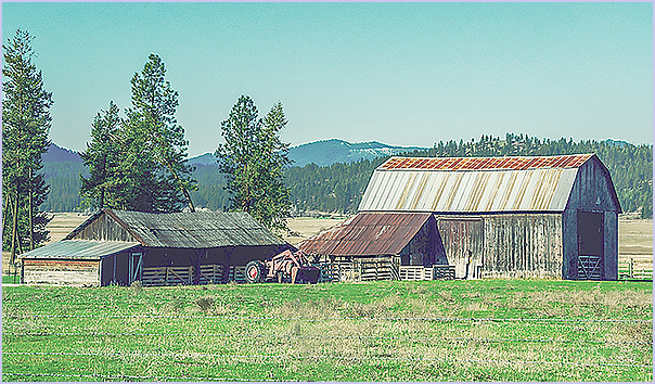 Barns and Tractor