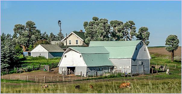 A Working Farm