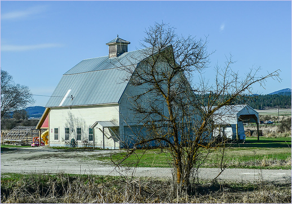 A Tree Screened Barn