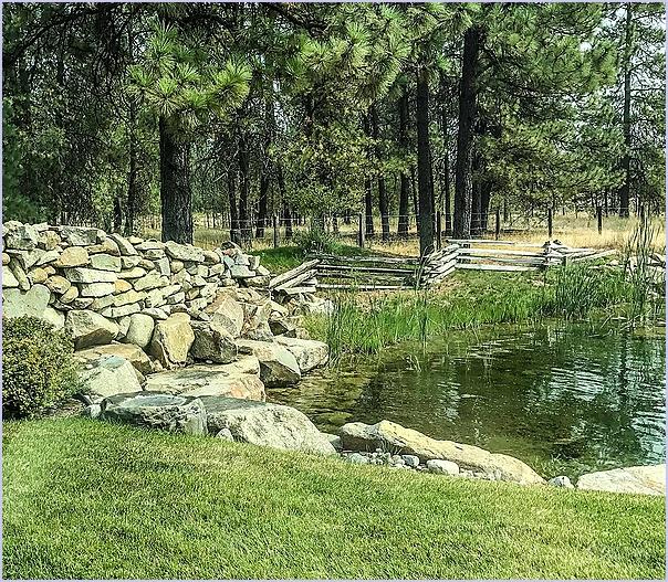 Fence Pond