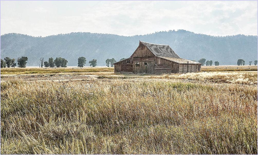 Grassy Barn