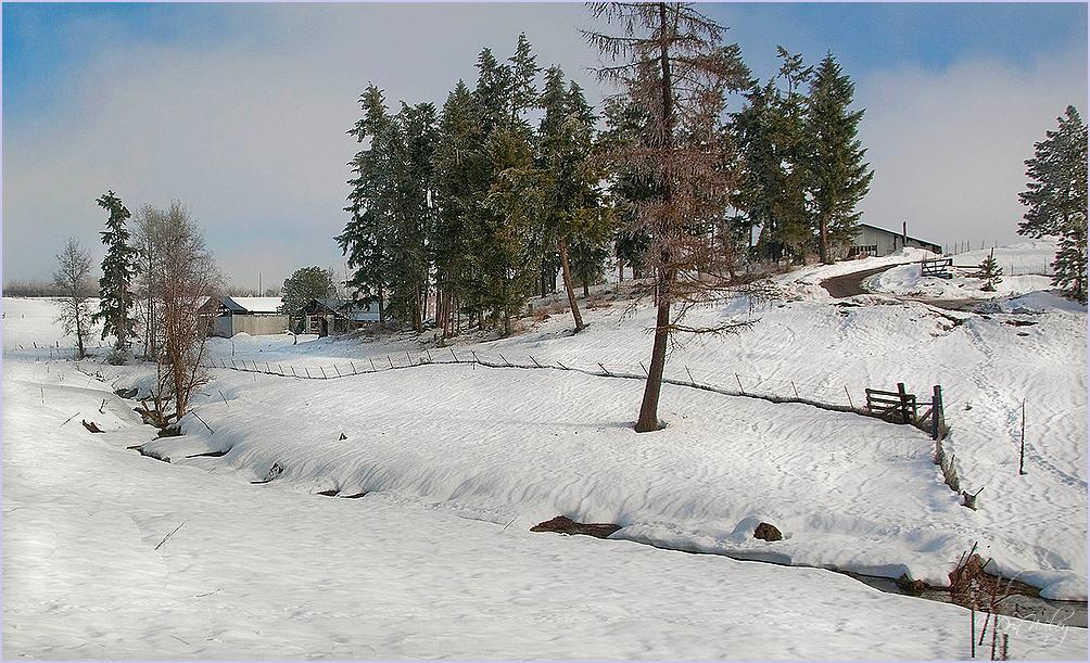 Creek Farm