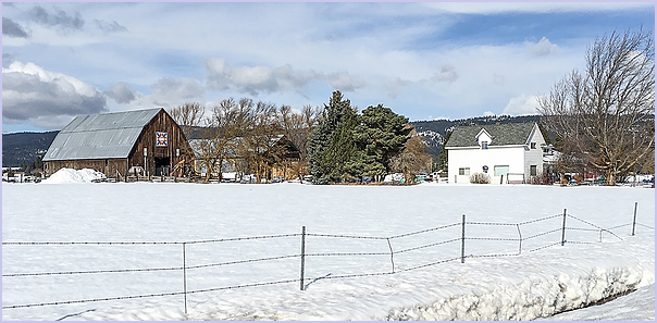 A Snowy Farm From A Previous year