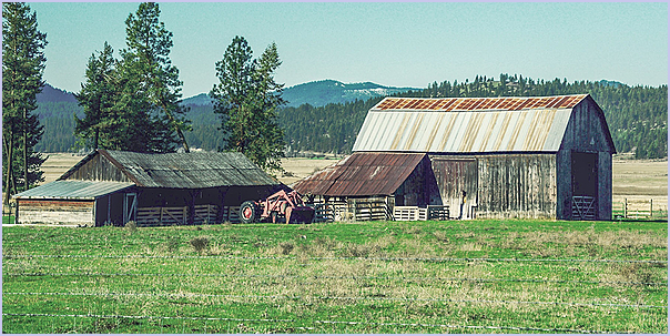Buildings and Barn