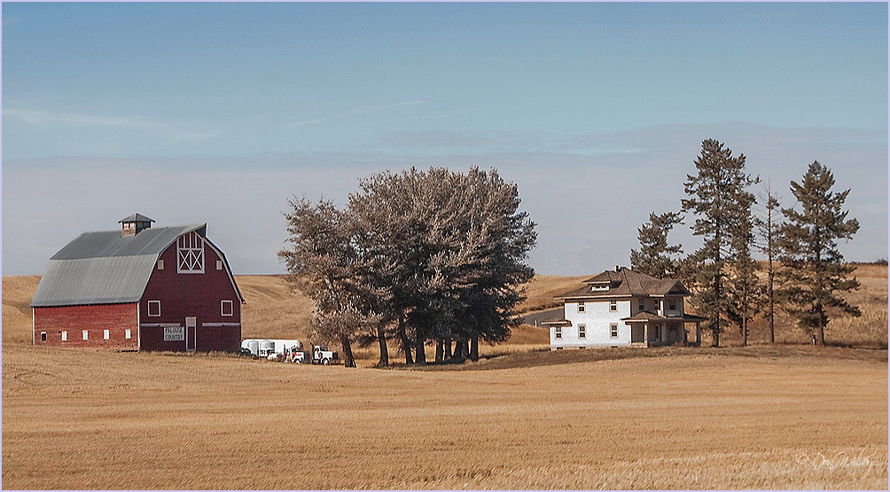 Palouse Country