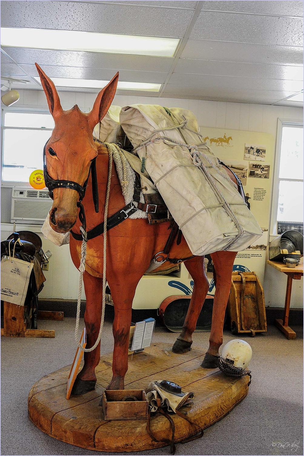 Pack Mule Display