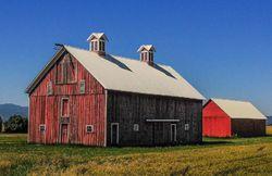 A Redish Barn