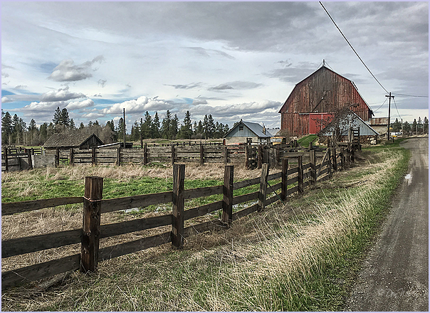 Fences - Barn