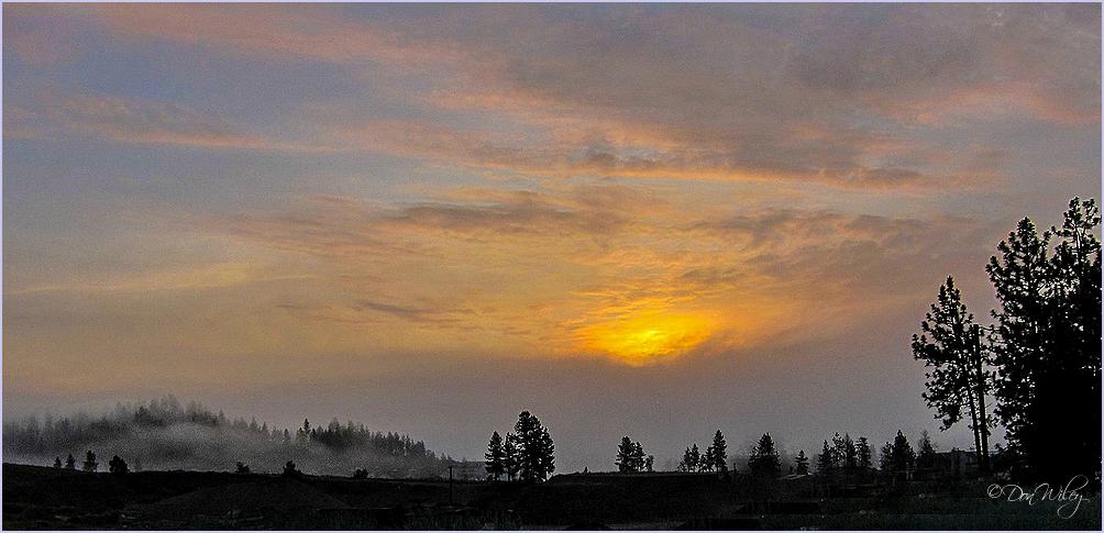 Mild Sunrise