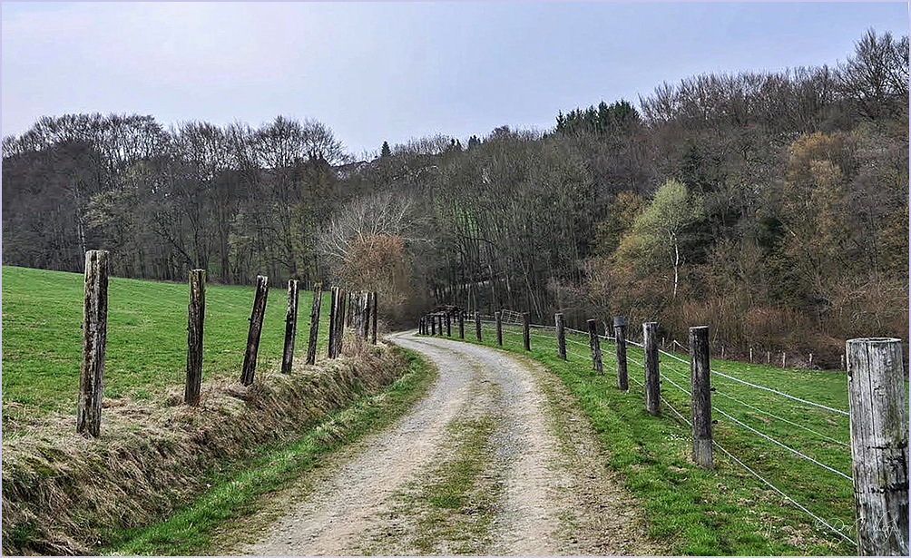 Fence Road
