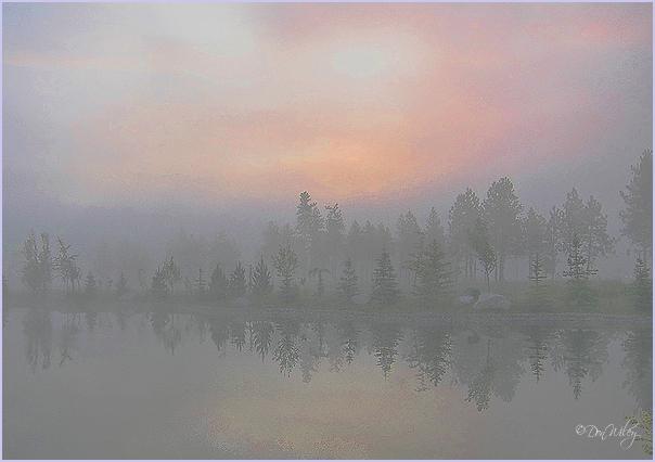 Fog Over Wandemere