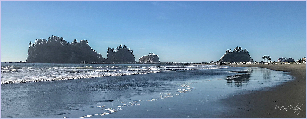 La Push Coast View