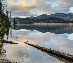 Log Water