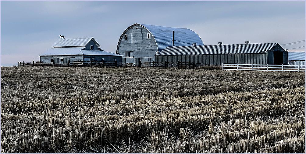 Stubble Farm