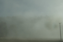 Storm Pole