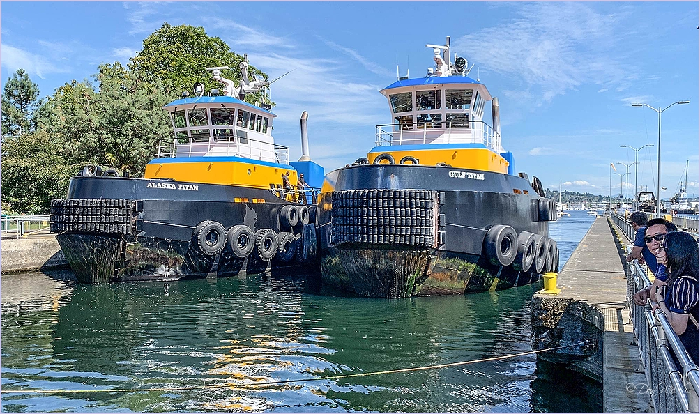 Two Tugs At The Locks