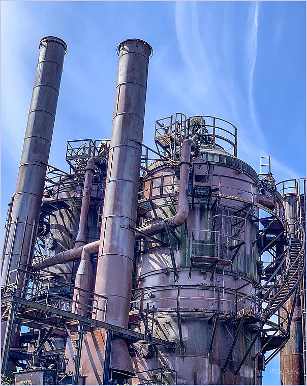 Rugged Plant