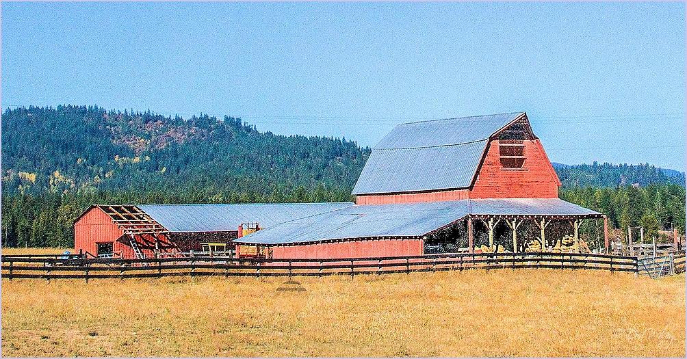 Large Barnyard