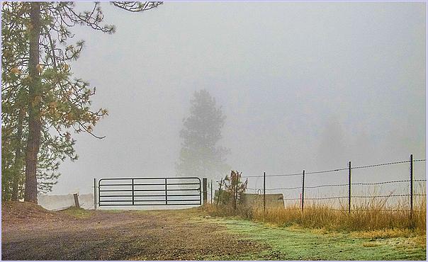Fog Gate