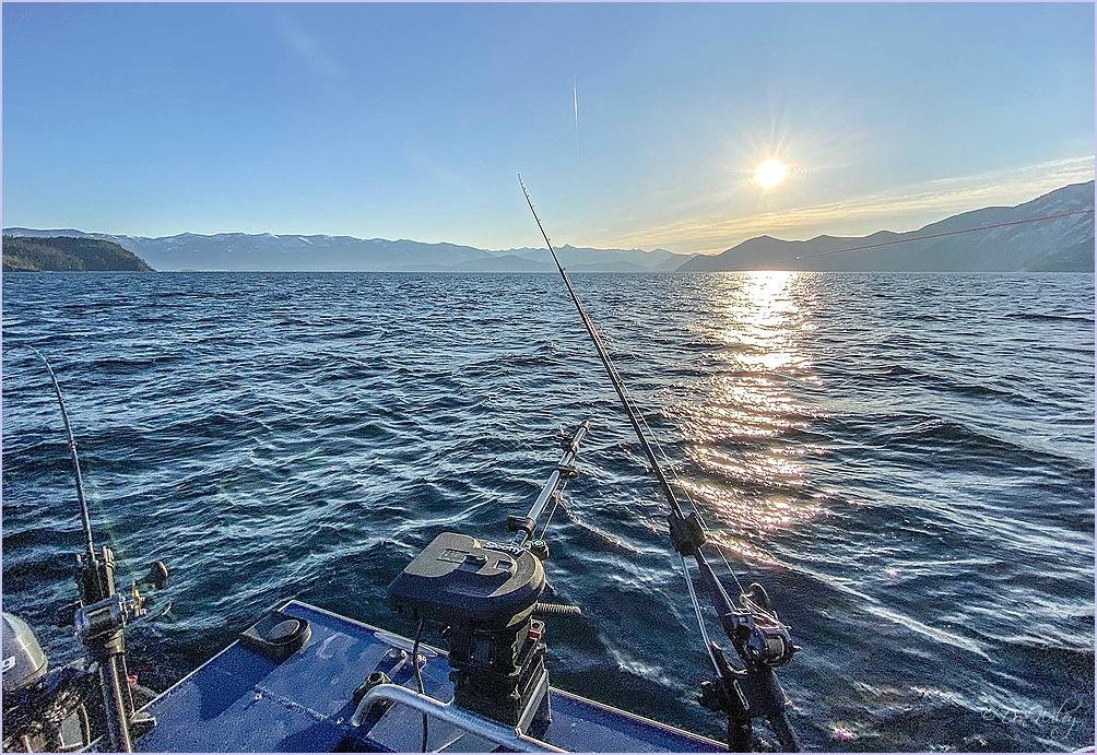 Fishing Sun