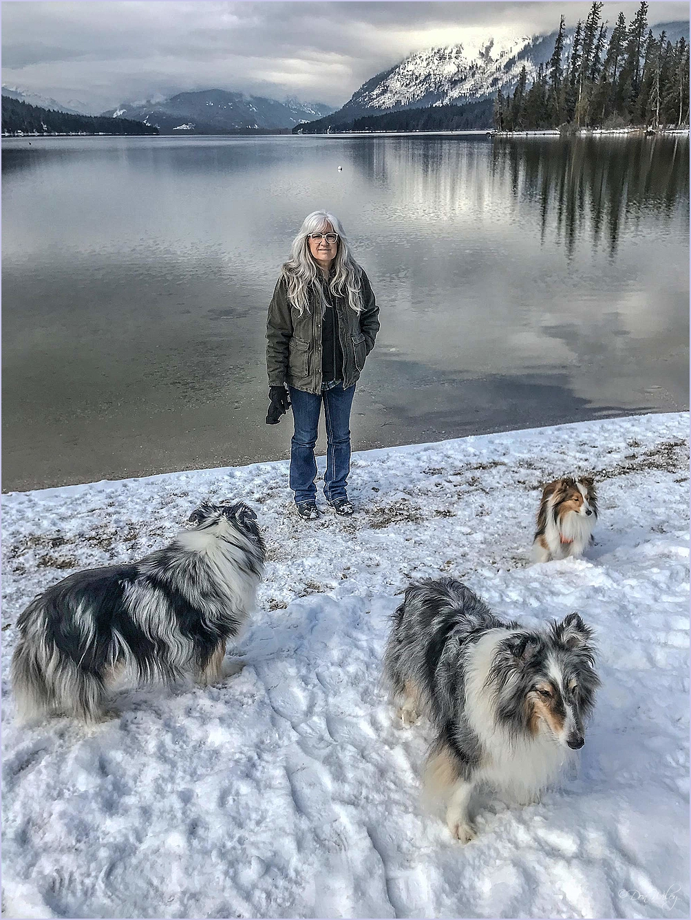 Debi With Dogs