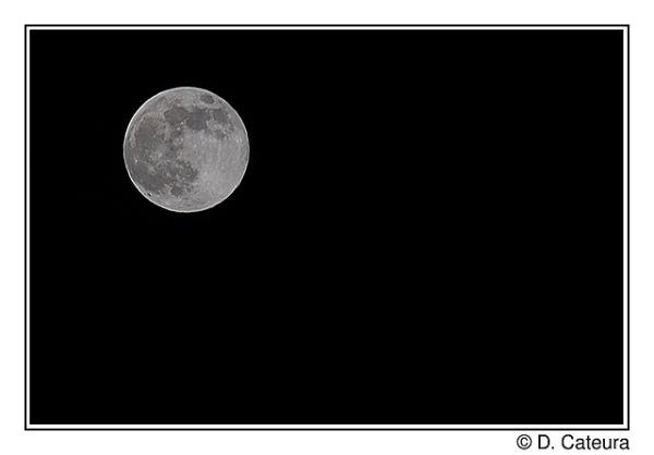 The big moon