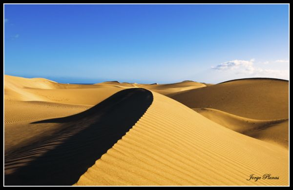 Una duna más en el horizonte