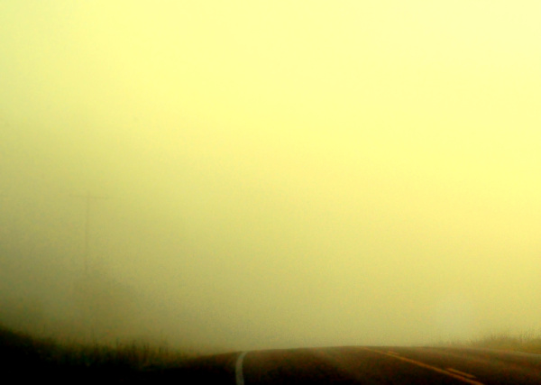 country road in the morning mist